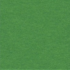 2.72m x 11m Chroma Green Paper Background