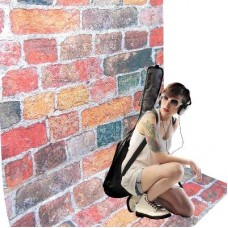 2.8 x 4m BRICKS SHEER PHOTO  Background